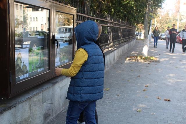 expozitie vitrine