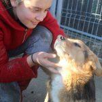 """Voluntar B.O.M.D, pentru cățeii abandonați: """"Animalele ne ajută sa fim oameni"""""""